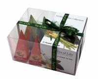 Аювердический чай Tea of Life Велнесс в пирамидках 12 шт