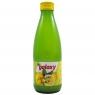 Galaxy Лимонный сок 100% в стеклянной банке 250 мл