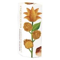 Chokodelika марципановые конфеты ручной работы с фундуком 100гр